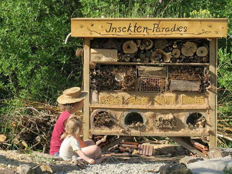 Mutter und Tochter beim beobachten von Wildbienen an der Insektenbrutwand